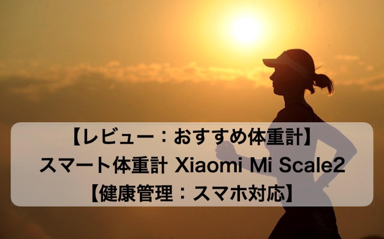 Mi_Scale2_000