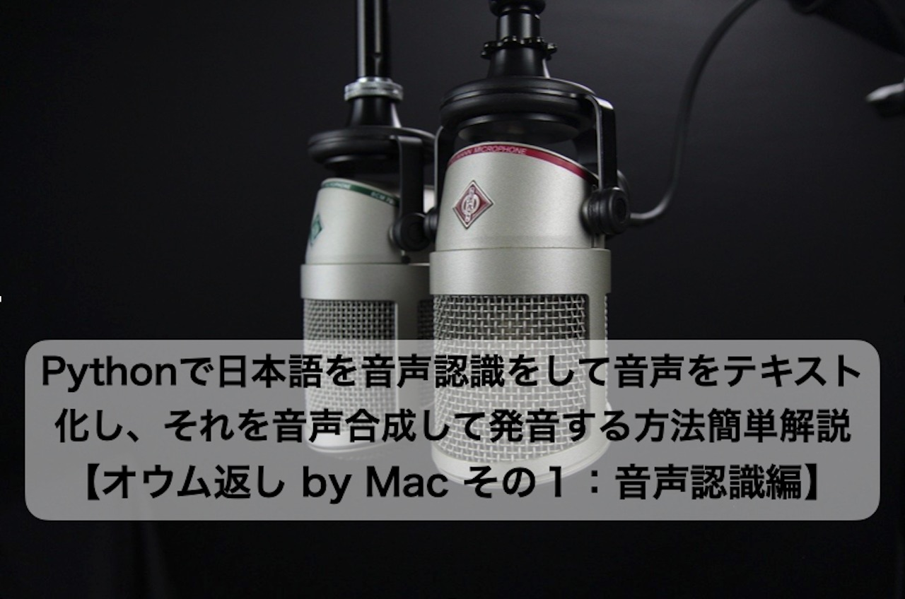 speech_recognition_00